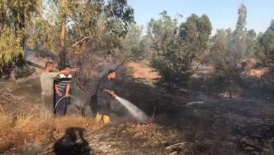 صورة إخماد حريق في منتزه صرمان