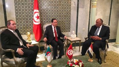وزير الخارجية المصري ووزير الخارجية التونسي ووزير الخارجية الجزائري - تونس