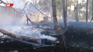Photo of اندلاع حريق بغابة كتيبة الأمن سابقا في شحات