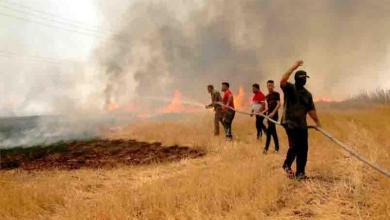 Photo of داعش يحرق محاصيل العراقيين انتقاما لهزيمته