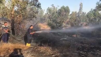 Photo of حريق يندلع في منتزه صرمان الوطني (فيديو)