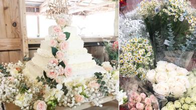 Photo of كعكة زفاف مميزة تثير اهتمام الأميركيين