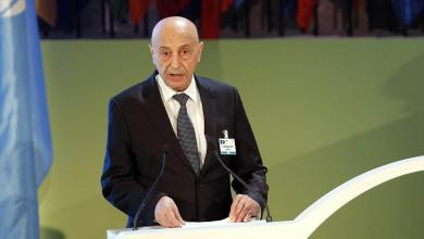Photo of صالح يُطالب بإجراءات دولية تُعاقب تركيا على تدخلها في ليبيا