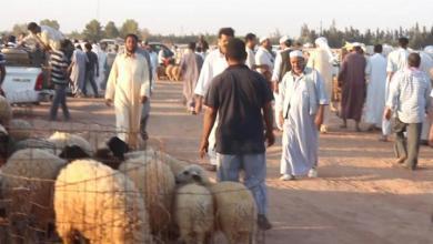Photo of حكاية وجع ليبية مع العيد: لم يتقاضى رواتبه منذ ثلاثة أعوام
