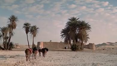 Photo of قصة فيلم عالمي شهدت معالم ليبيا تصويره