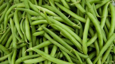 صورة احذروا تناول الفاصولياء الخضراء النيئة