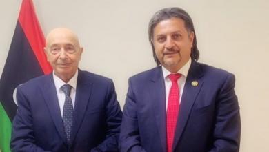 صالح يلتقي رئيس هيئة الكهرباء في الحكومة المؤقتة