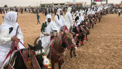 """Photo of """"أجواء السلام"""" تخيّم على مهرجان العجيلات للفروسية"""