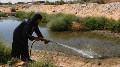 Photo of وادي البوانيس تستنفر للقضاء على البعوض