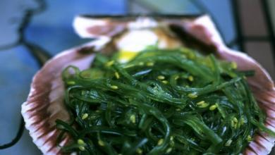 صورة دراسة يابانية تكشف فائدة مهمة للأعشاب البحرية