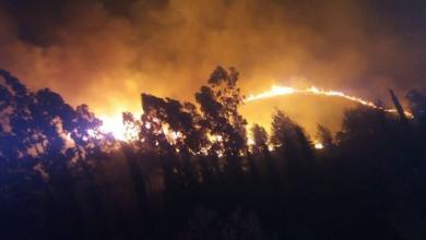 Photo of حرائق هائلة تجتاح غابات في لبنان ( فيديو وصور)