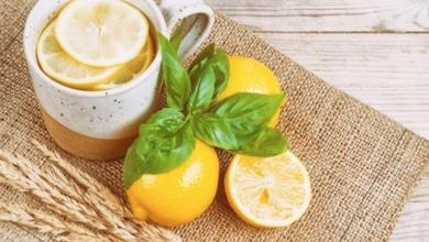 Photo of دراسة تكشف علاقة الماء الدافئ والليمون بإنقاص الوزن