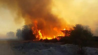 Photo of بالفيديو.. حريق هائل في تازربو يُهدد المنازل