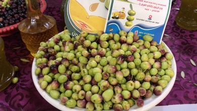 Photo of افتتاح معرض منتجات الزيتون في الجميل
