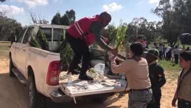 Photo of حملة تشجير تطوعية في منتزه صرمان