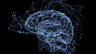 Photo of دراسة تكشف فوائد كبيرة للتفاؤل.. تعرف عليها