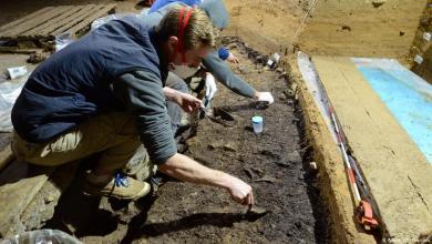 Photo of اكتشاف أثري يحدد زمن وصول الإنسان العاقل لأوروبا