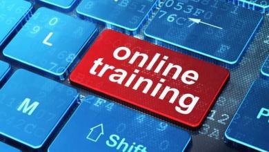 صورة وزارة العمل تدعو الباحثين عن عمل للتدريب الإلكتروني