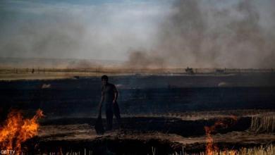 Photo of بأوامر ترامب.. حقول القمح السورية باتت رمادا