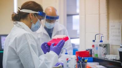 Photo of دراسة سويدية تفجر مفاجأة بشأن المناعة ضد كورونا