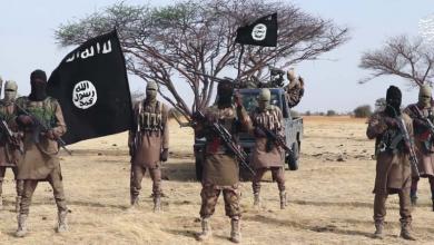 "Photo of ""الأزمات الدولية"" تحذر من نفوذ ""بوكا حرام"" شمال غرب نيجيريا"
