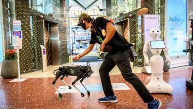 """صورة تايلاند تحارب كورونا بكلاب """"آلية"""""""