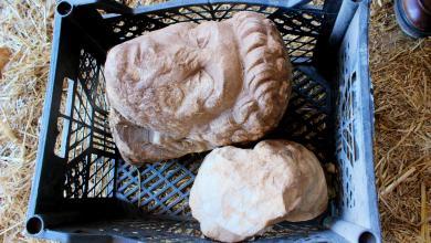 Photo of شحات.. تسليم 6 قطع أثرية لمصلحة الآثار-((صور))