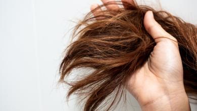صورة تجفيف الشعر بالوسائل الحرارية دون ضرر.. إليك الطريقة