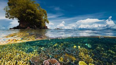 صورة في اليوم العالمي لحفظ طبقة الأوزون.. الأمم المتحدة تدعو لإنقاذ المناخ