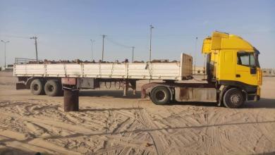 """صورة """"الواحات"""".. ضبط شاحنة مواشي قادمة من السودان"""
