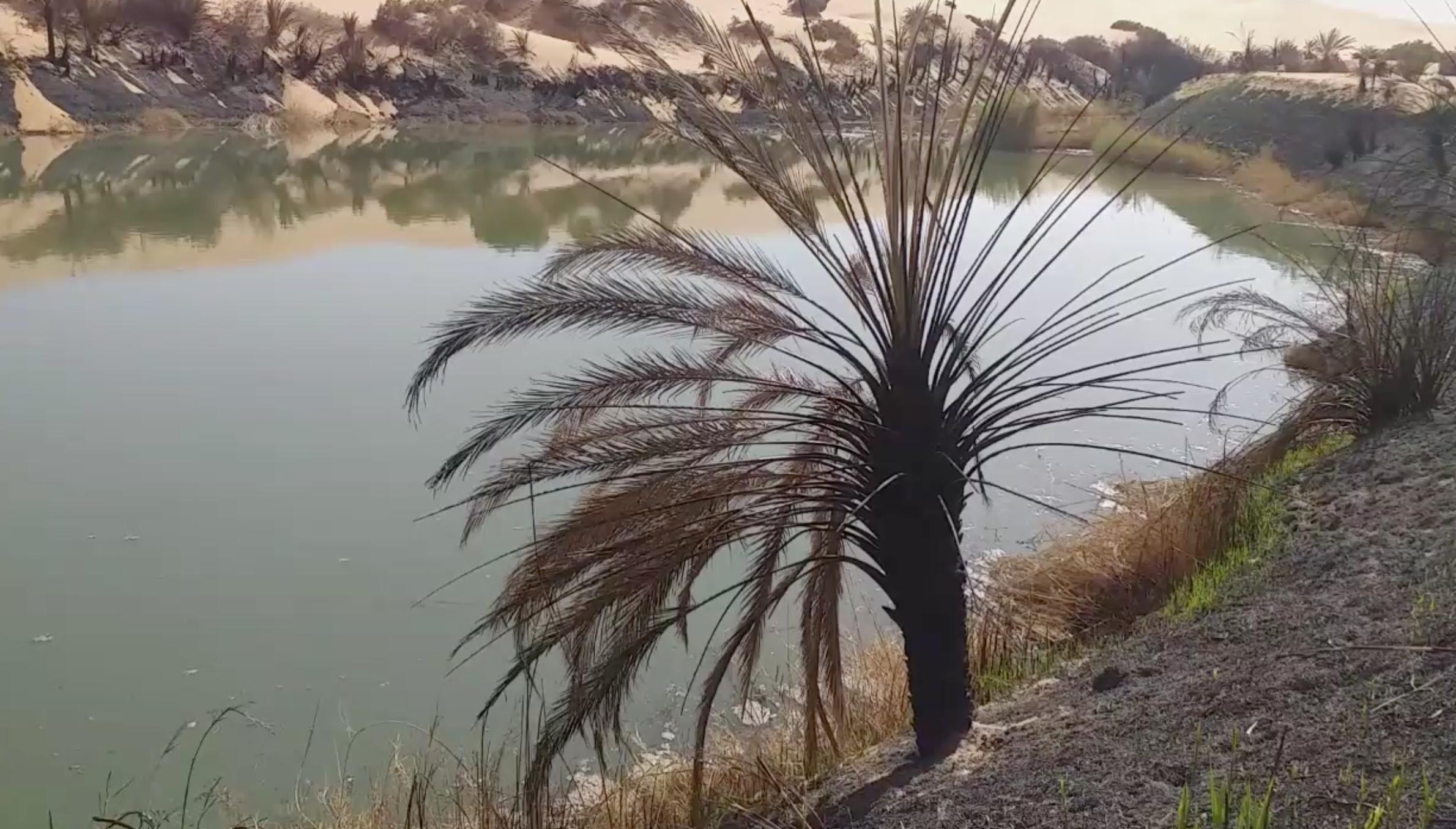 بحيرة مافو بعد الحريق - قبرعون
