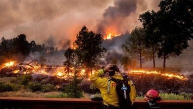 صورة كاليفورنيا في قلب الرعب.. حرائق الغابات تهدد عشرات الآلاف
